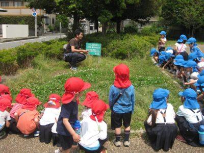 せせらぎ公園に到着。シロツメ草の前で、お話を聞く子供たち。