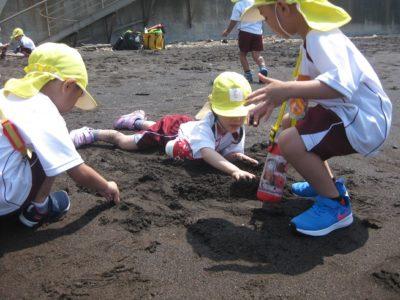 年少組も、砂遊び。宝石を探して掘っているんですって。