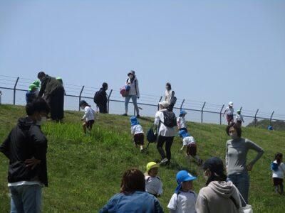 草の坂を行ったり来たり、ゴロゴロ転がっている子もいました。
