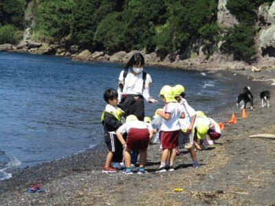 砂浜では、石や貝殻集めを楽しみました。